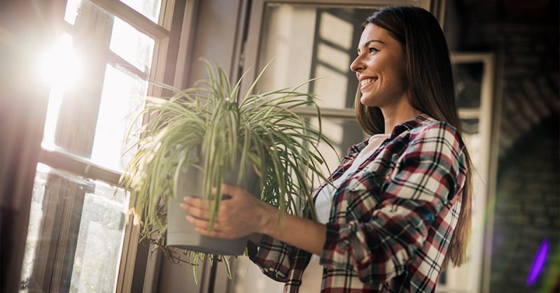 A woman in a plaid shirt holds up a potted houseplant while smiling.